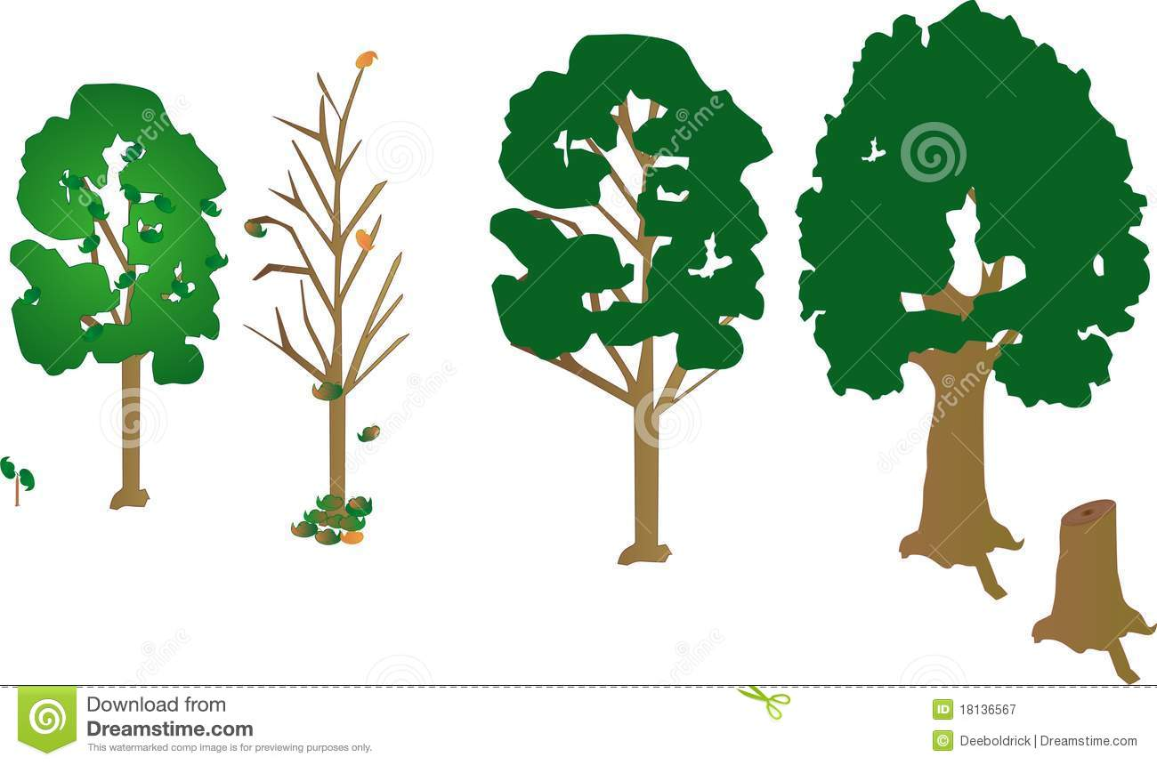 4 Trees A Sapling And A Dead Trunk Tree Growth Royalty Free