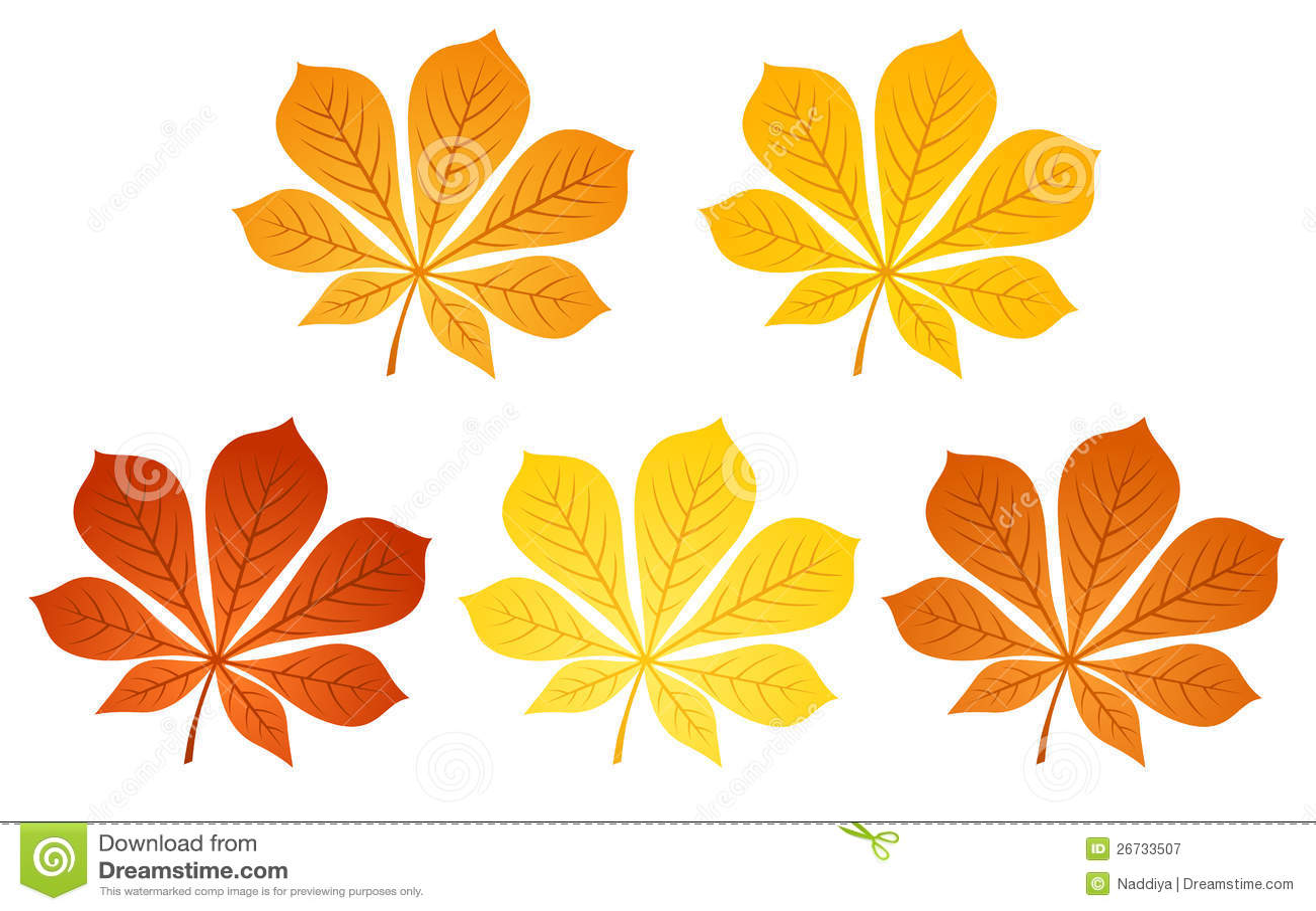 картинки листья клёна осенью