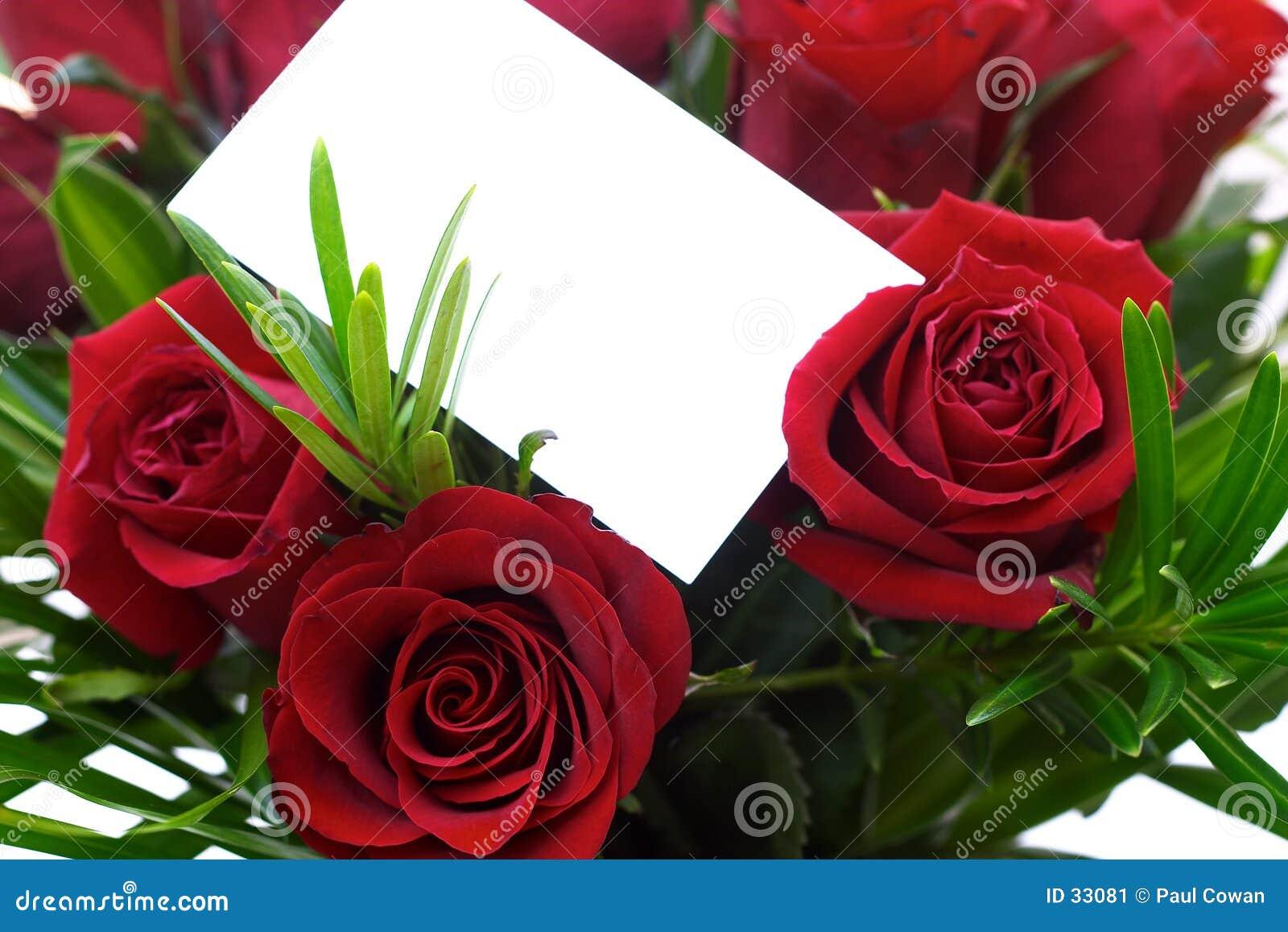 5 czerwona róża