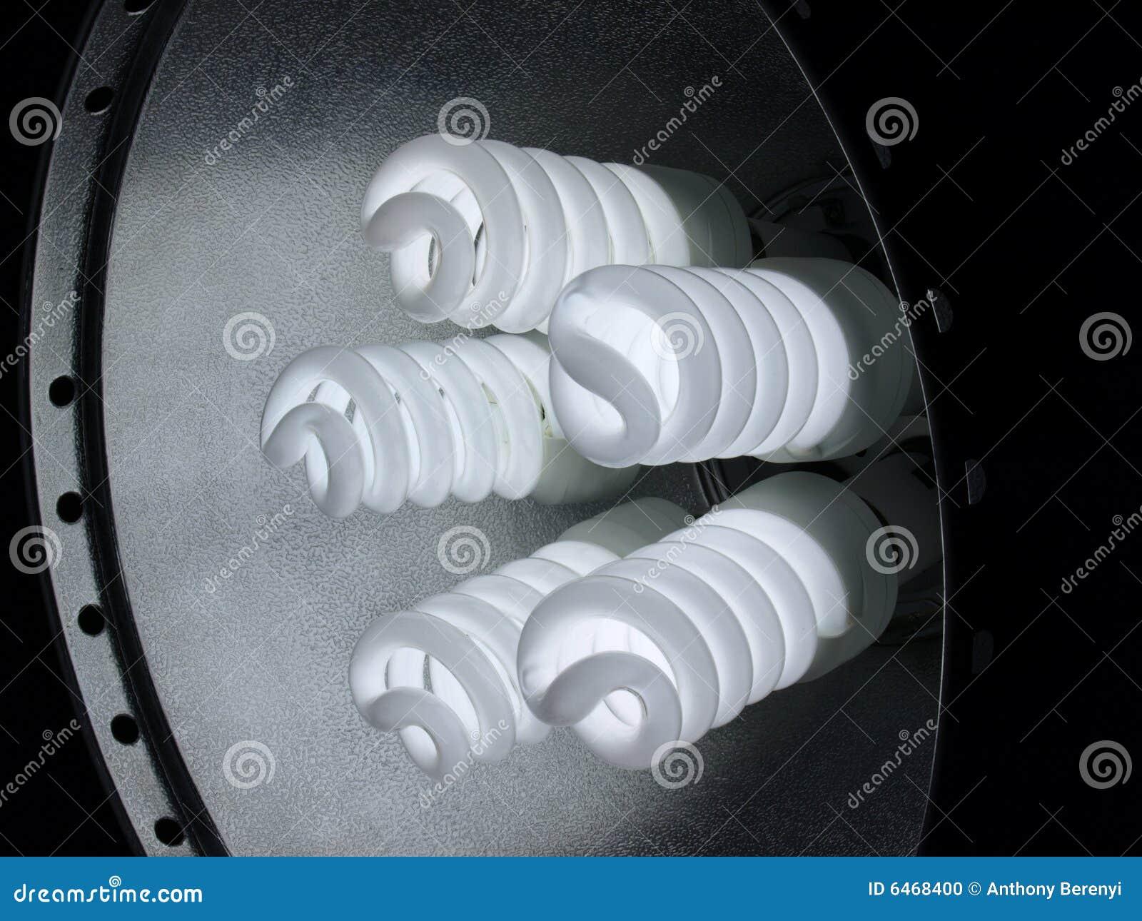 5 dokładne fluorescents spirali kwiatowych