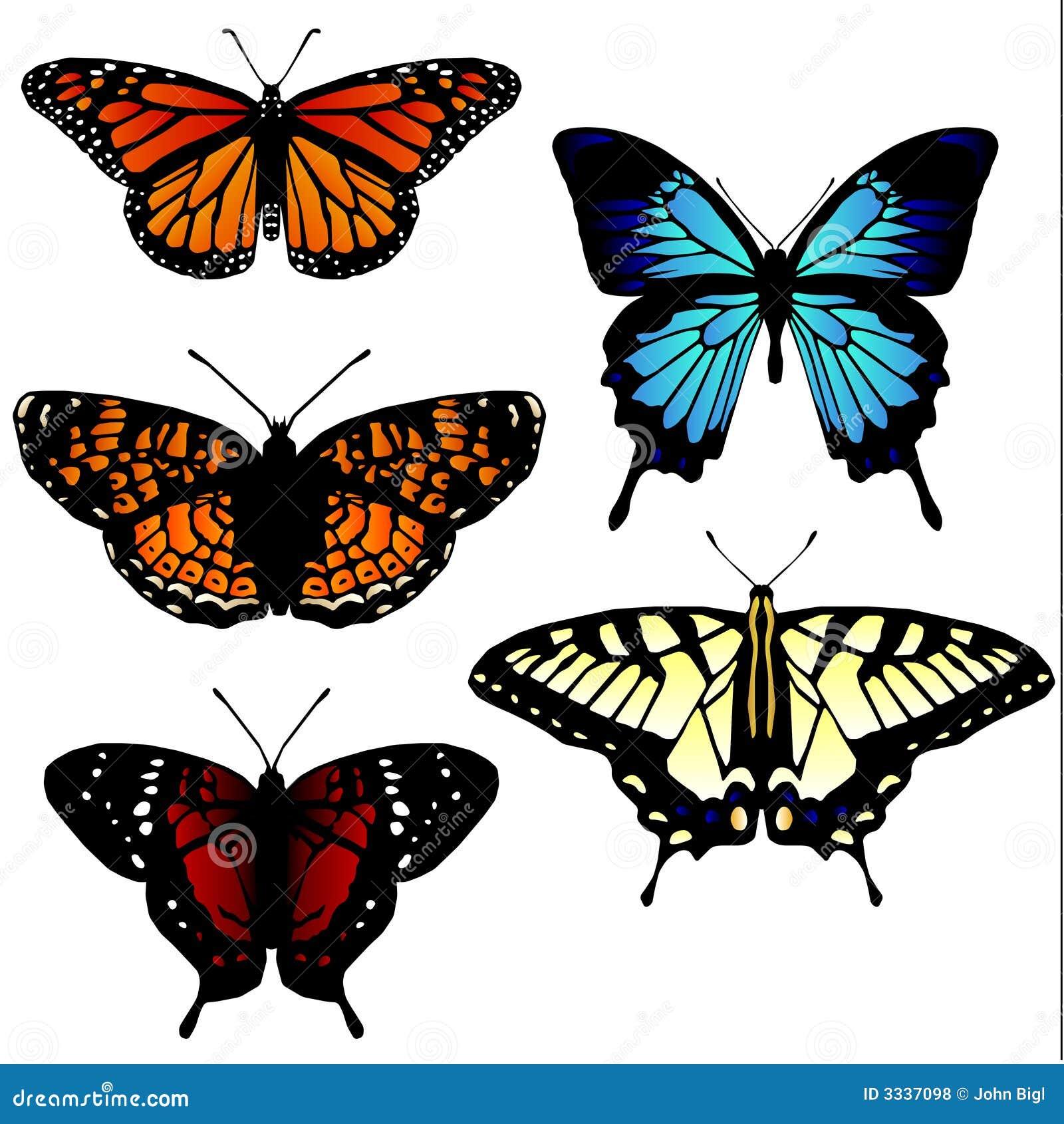 5 ilustraciones de la mariposa