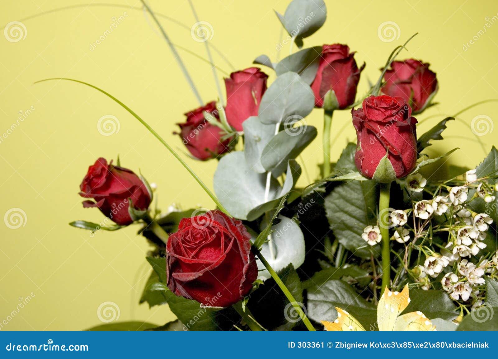 5 kwiatów