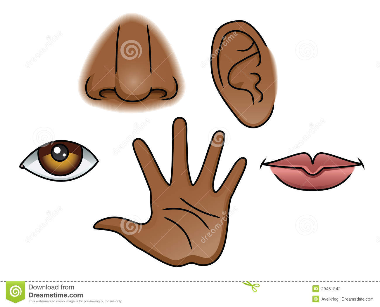 The Five Senses Royalty Free Stock Photography - Image: 38624147