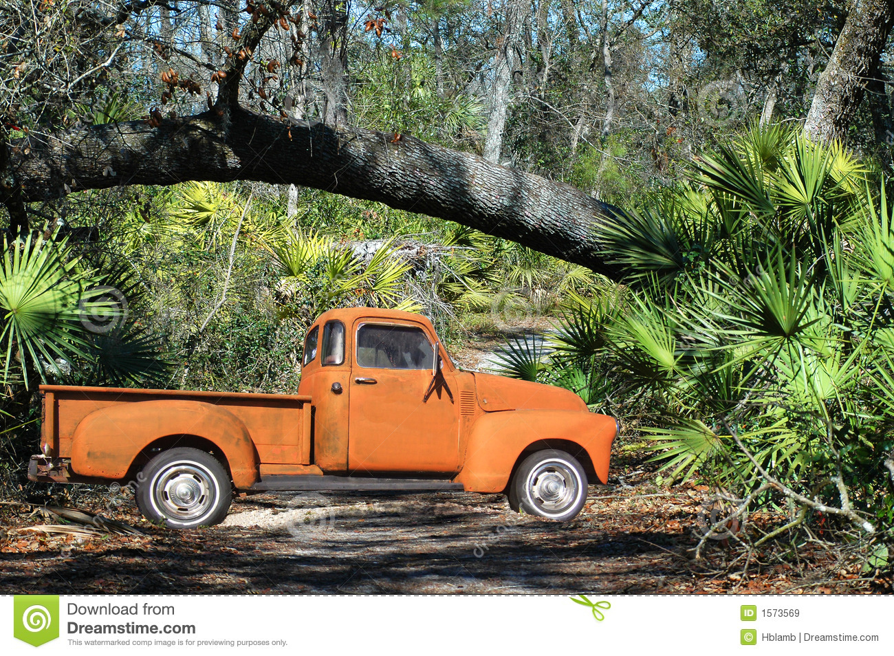 54 Chevy Pickup Off Road Royalty Free Stock Images - Image ...