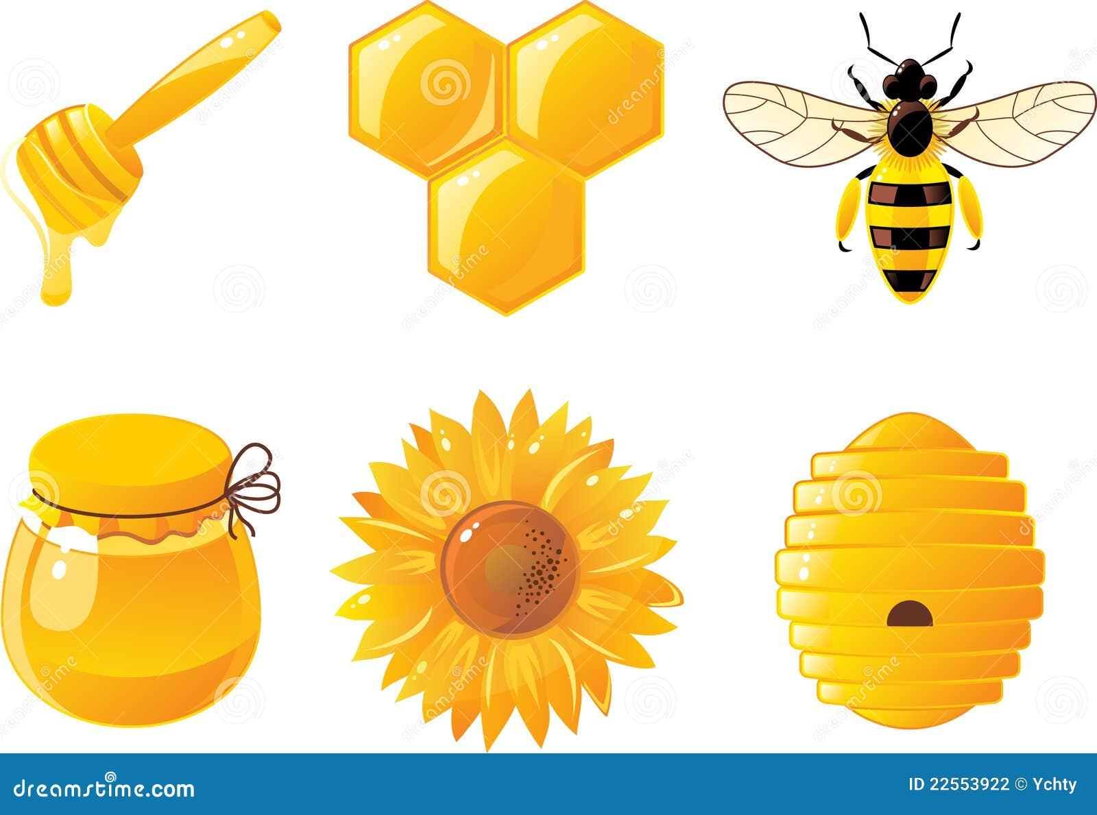 6 εικονίδια μελιού μελι&sigma