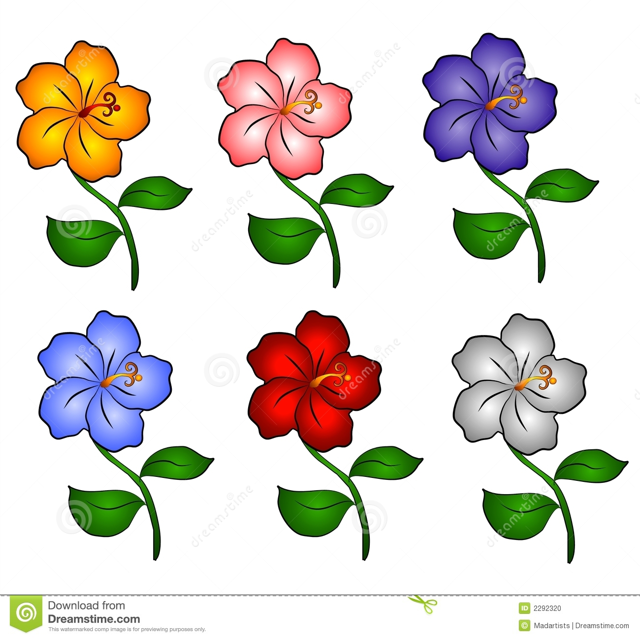 An illustration of 6 individually colored hawaiian hibiscus flowers in ...