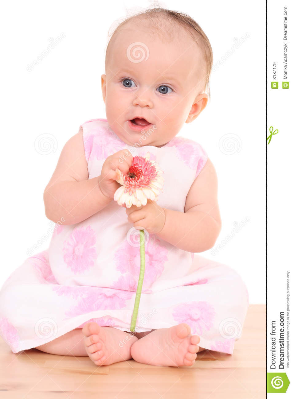 Months Baby Girl With Flower Royalty Free Stock Images - Image ...