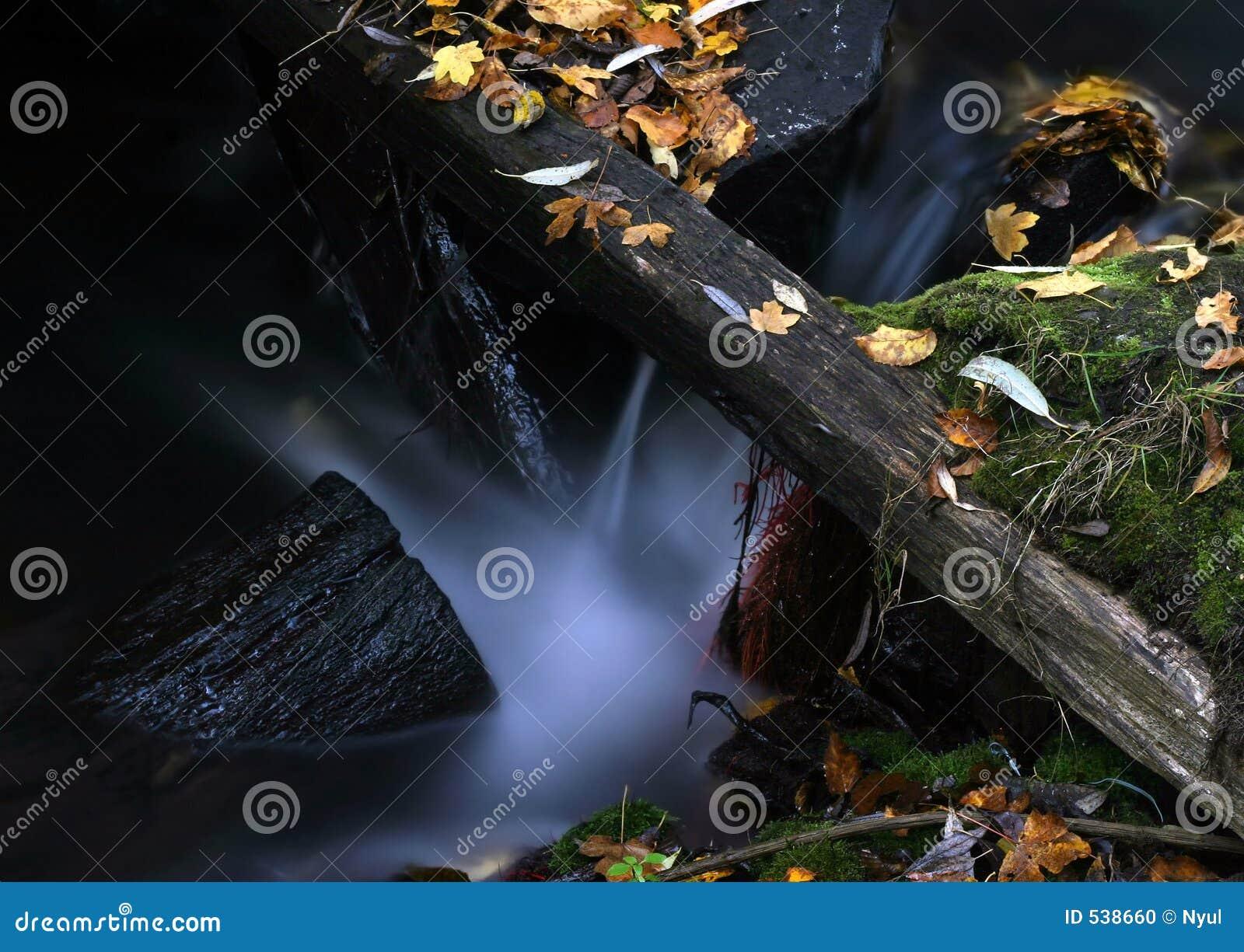 Download 7片叶子水 库存照片. 图片 包括有 runnel, 级联, 自治权, 小河, 生活, 秋天, 洪流, 森林 - 538660