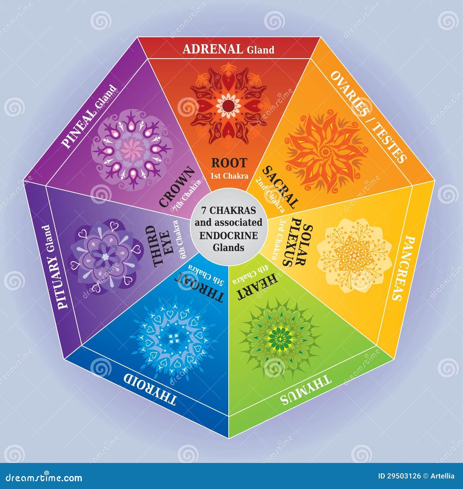 Très Reiki, Chakras, Yoga Symbols Stock Vector - Image: 5800782 UT06