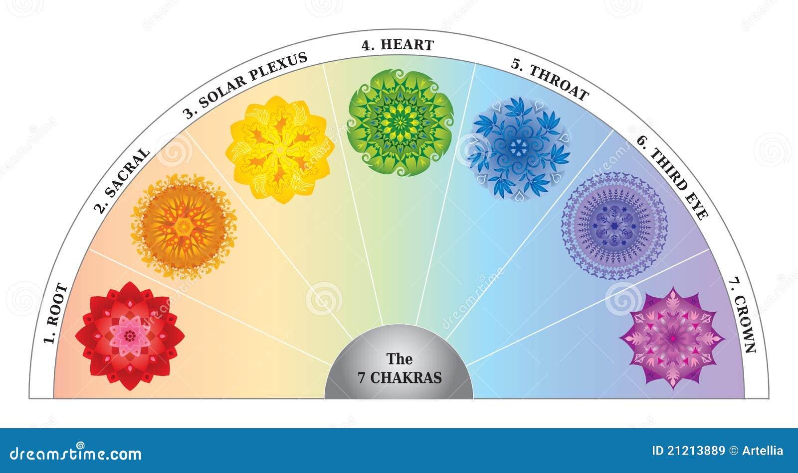 7 de Grafiek/de Halve cirkel van de Kleur Chakras met Mandalas