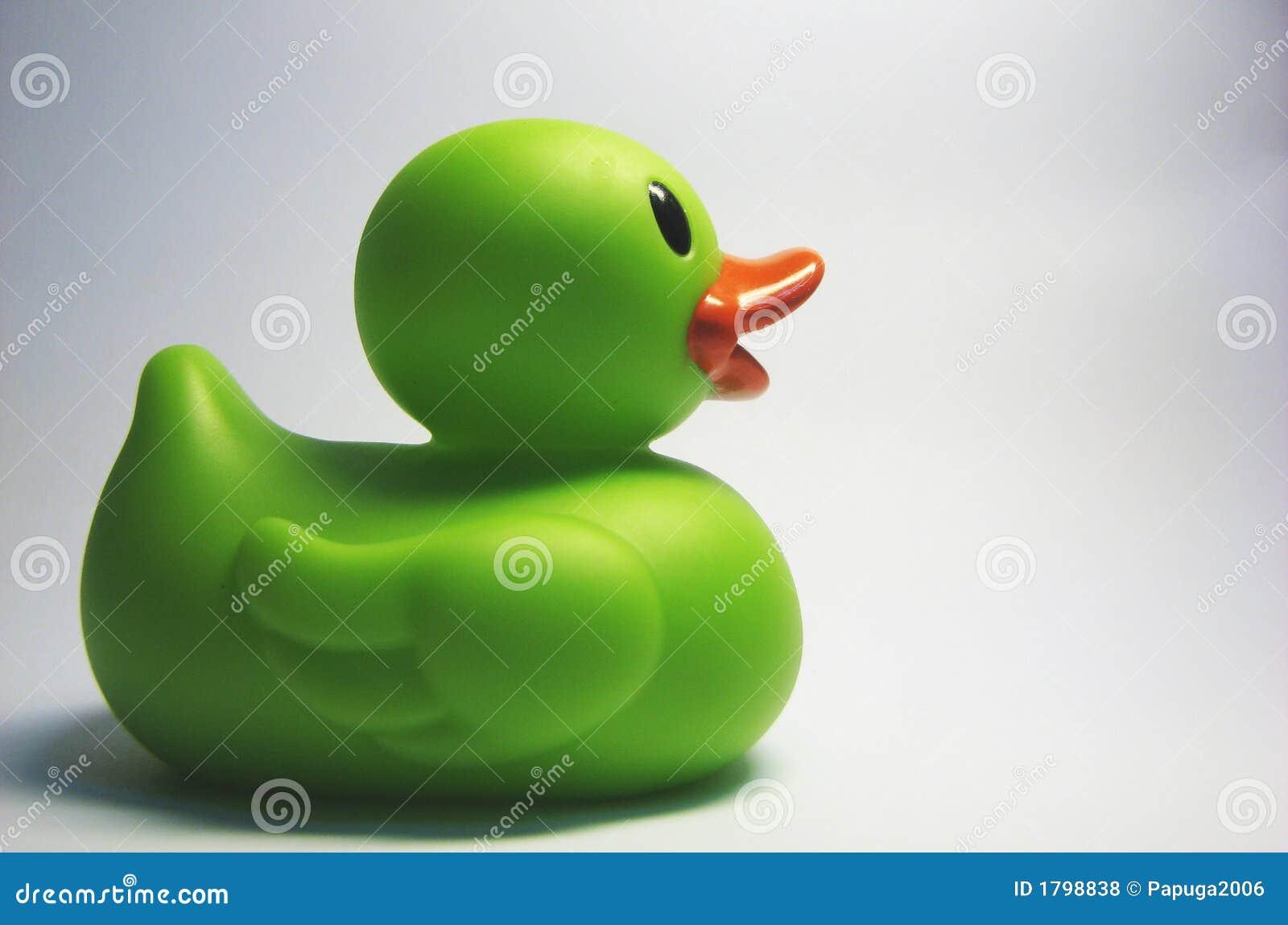 8只鸭子绿色胶