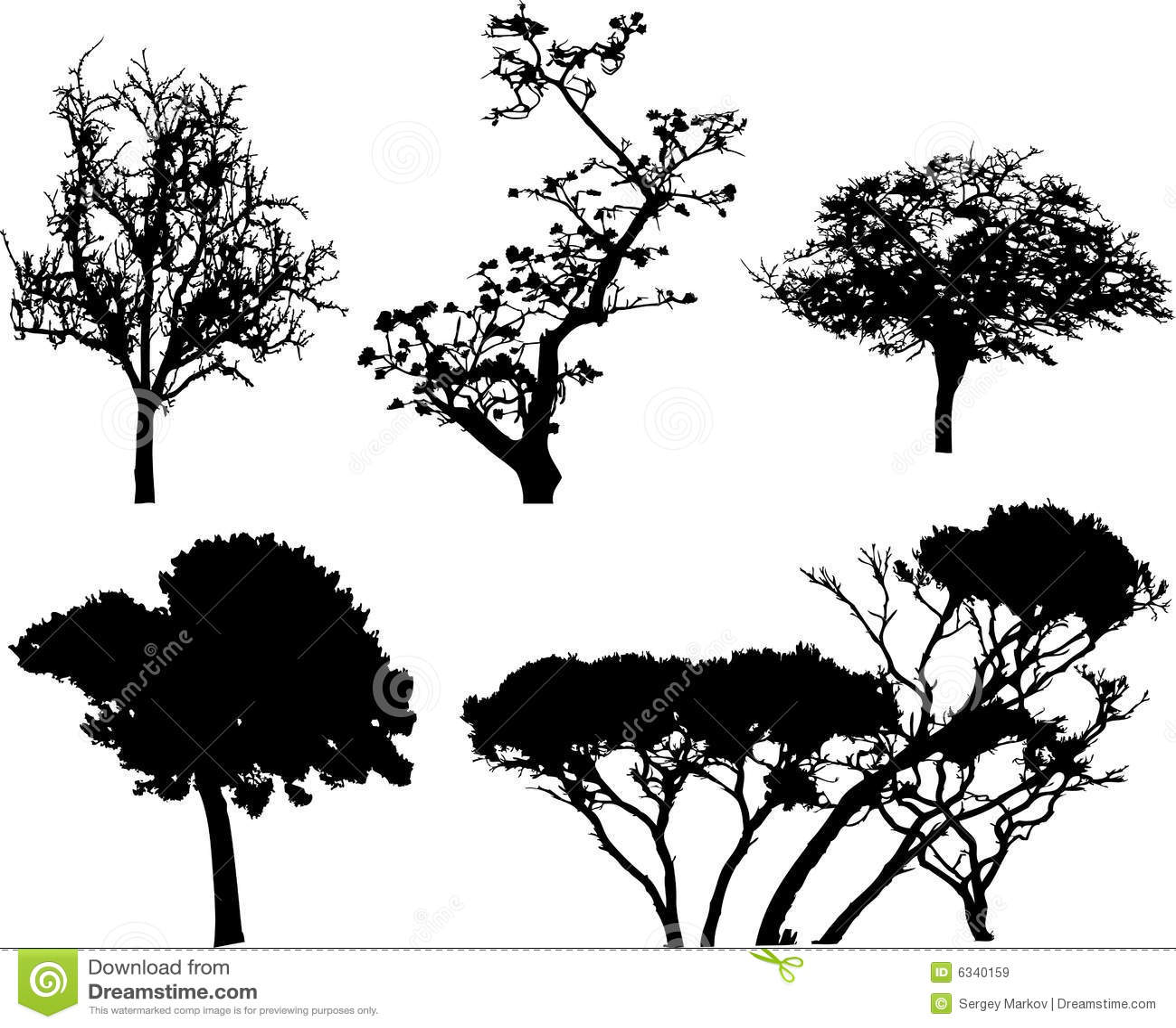 9个查出的集合结构树