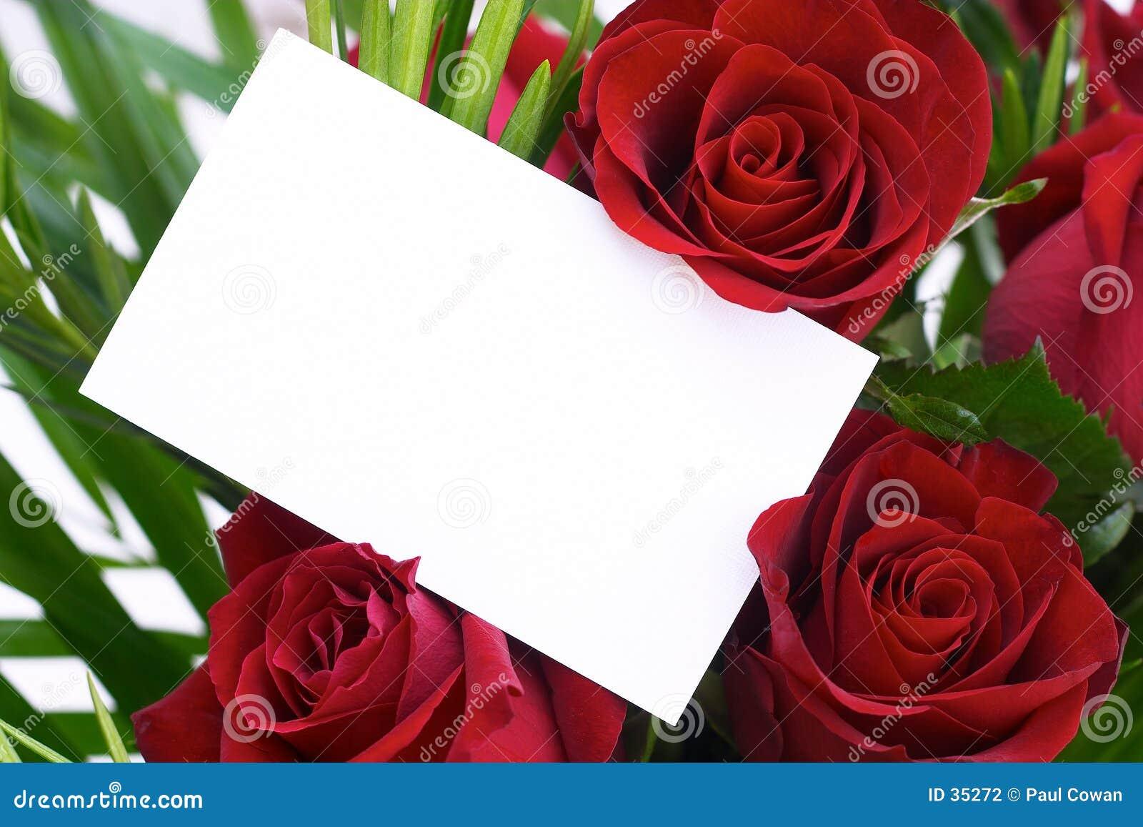 9 czerwona róża