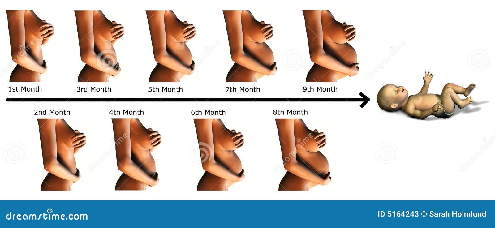 Diese Schwangerschaftsanzeichen lgen nicht!