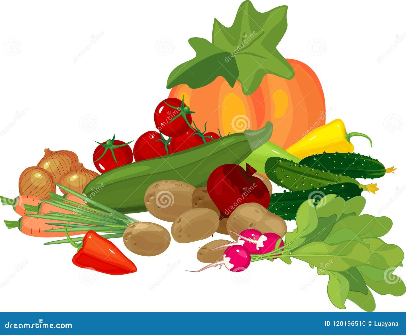 Aún vida grande con la composición de la cosecha del otoño con la calabaza y otras diversas verduras en el fondo blanco