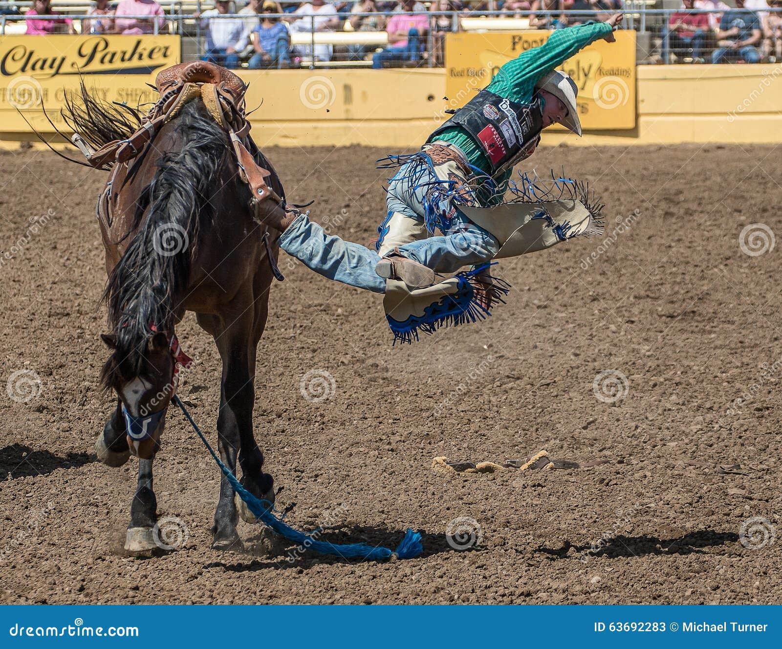 A行驶颠簸的圈地牛仔