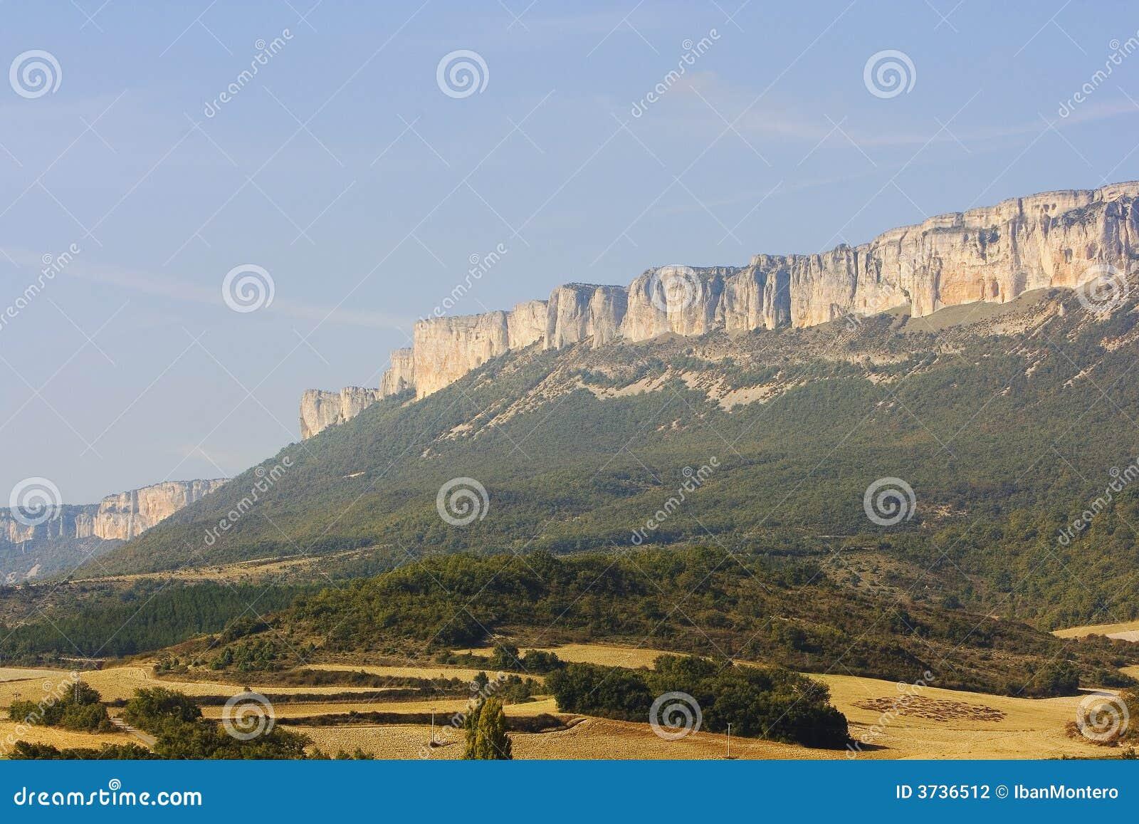 Het beeld van de aard van bergen groen bomen en bos