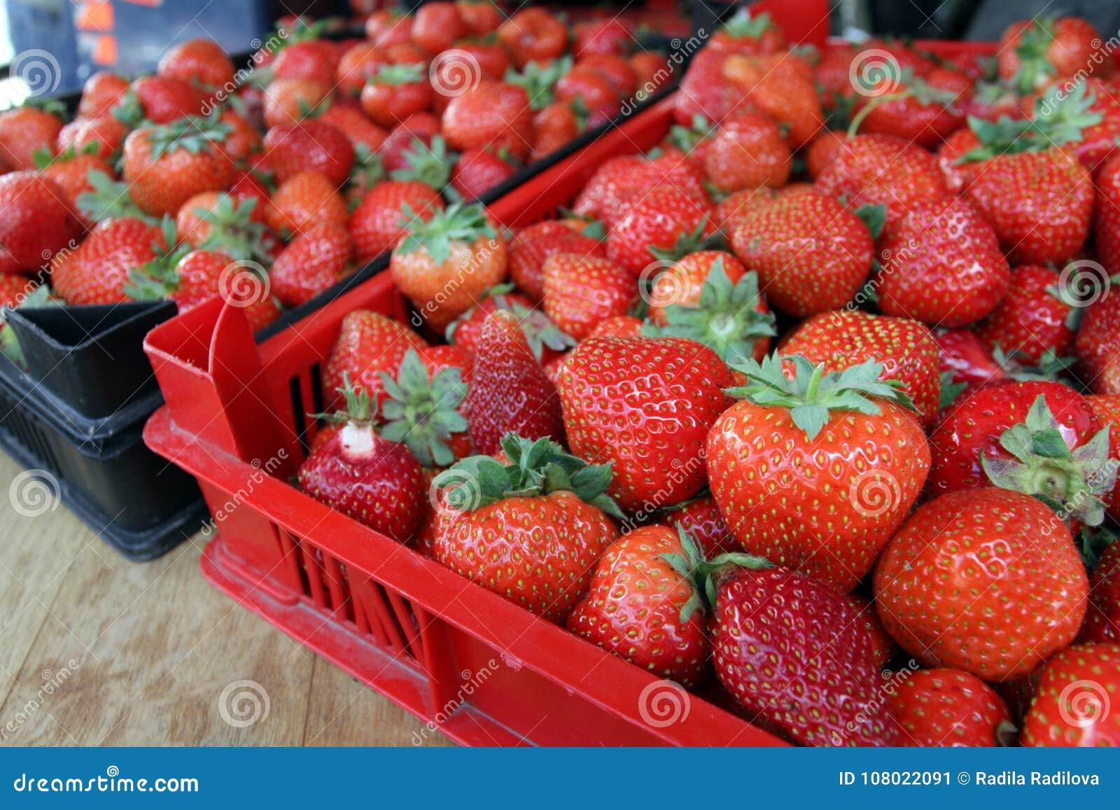 Aardbei Verse organische aardbeien in daglicht op een markt Vruchten achtergrond Gezond voedsel Heel wat helder, is verse bessen