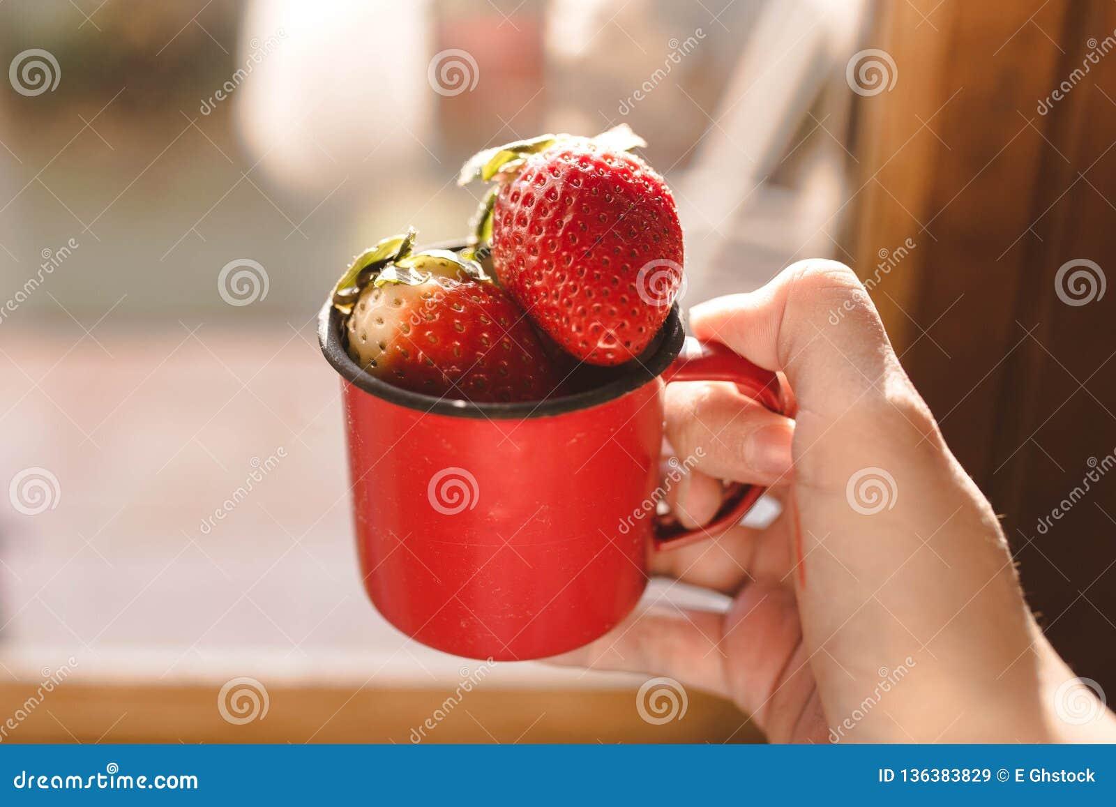 Aardbeien in een rode emailmok en één hand die de mok houden
