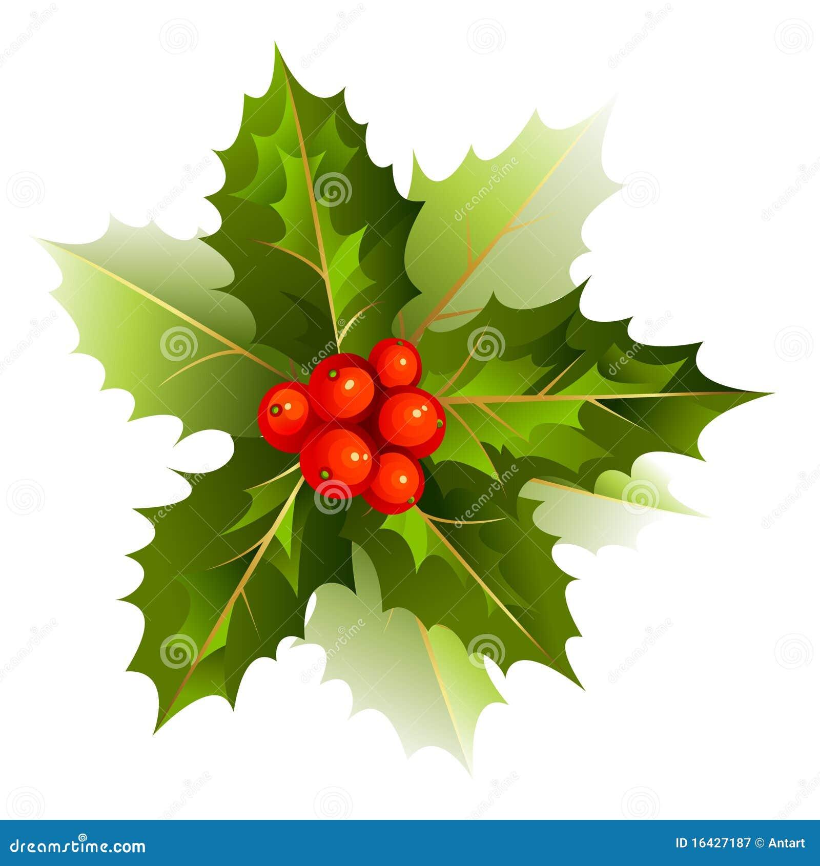Aardige de hulsttak van kerstmis royalty vrije stock fotografie ...