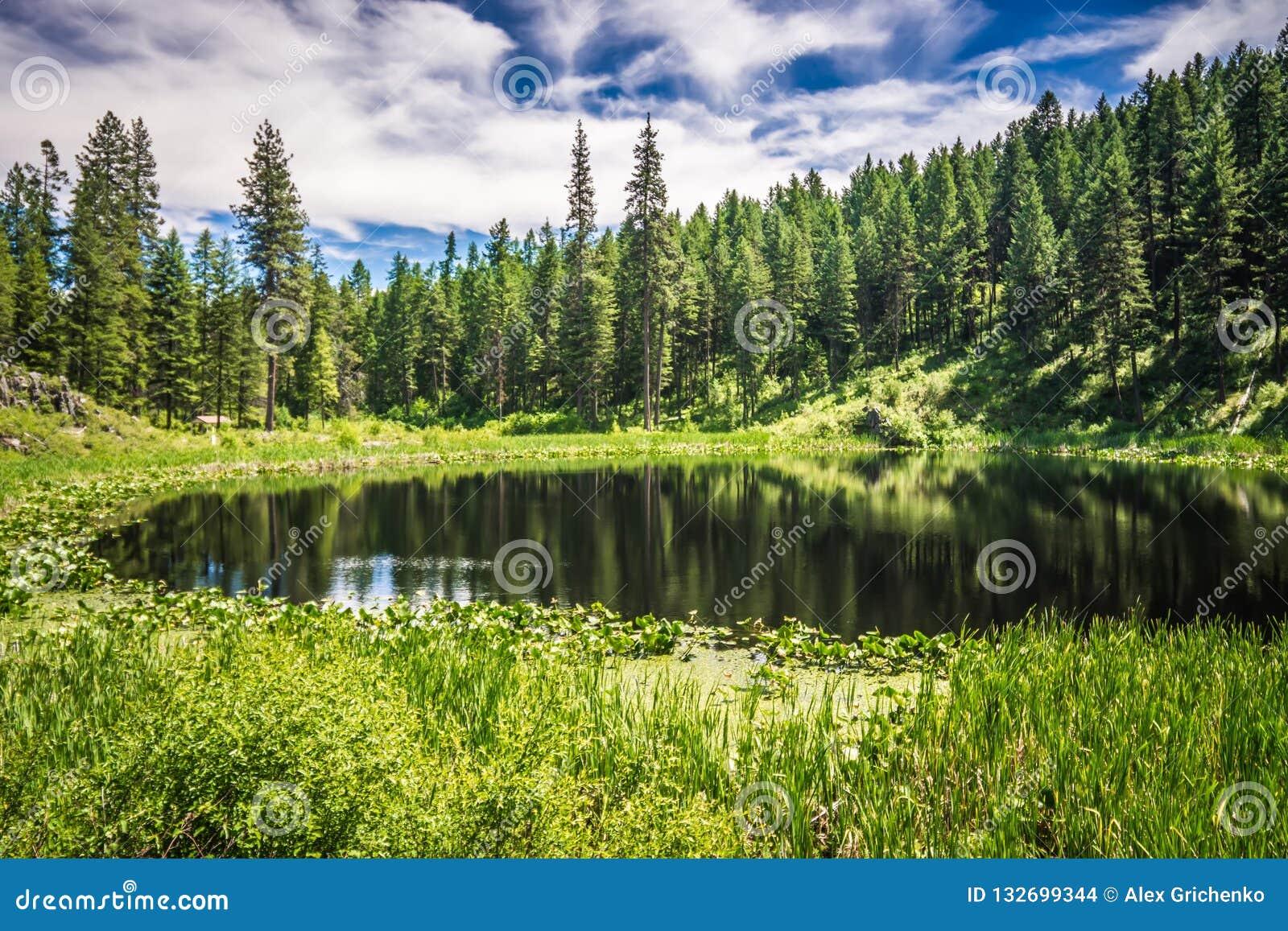 Aardscenics rond de rivier Washington van Spokane