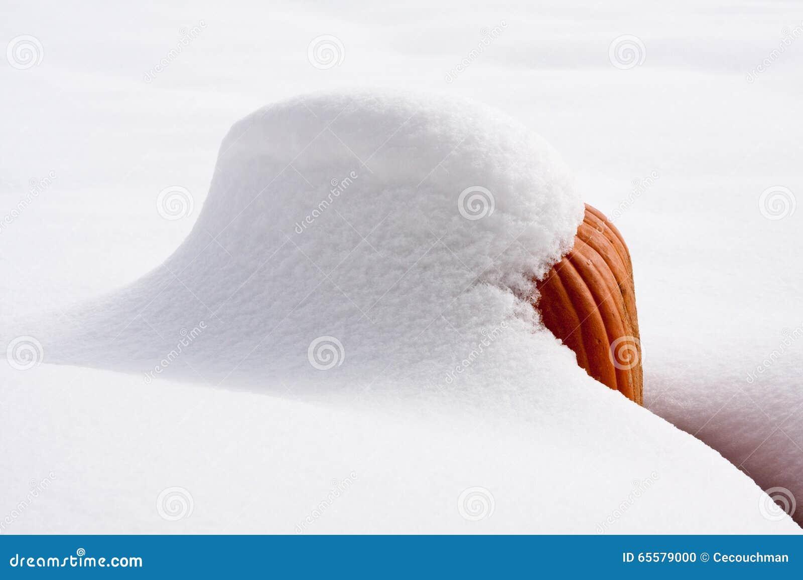Abóbora coberto de neve na luz do sol