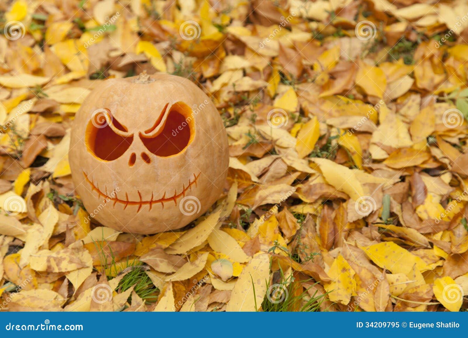 Abóbora de Dia das Bruxas nas folhas douradas
