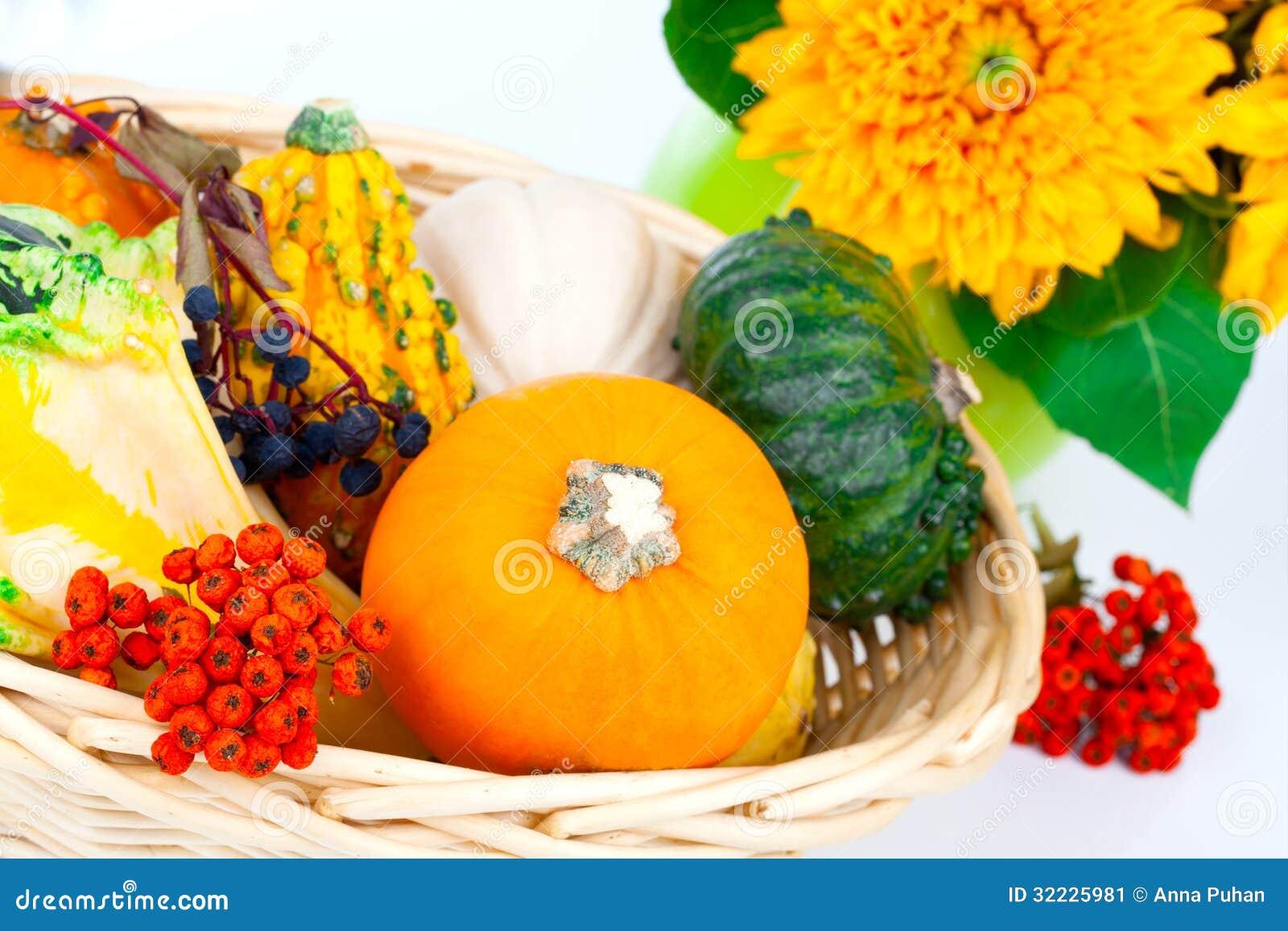 Download Abóboras de outono imagem de stock. Imagem de orgânico - 32225981