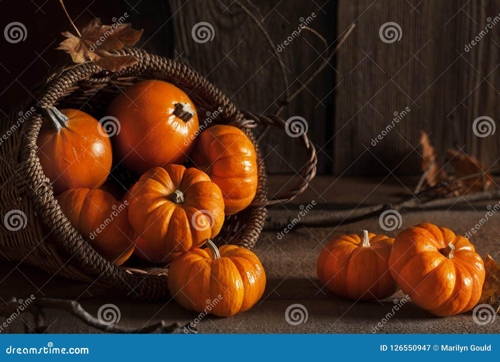 Abóboras pequenas na cesta na tabela de madeira velha
