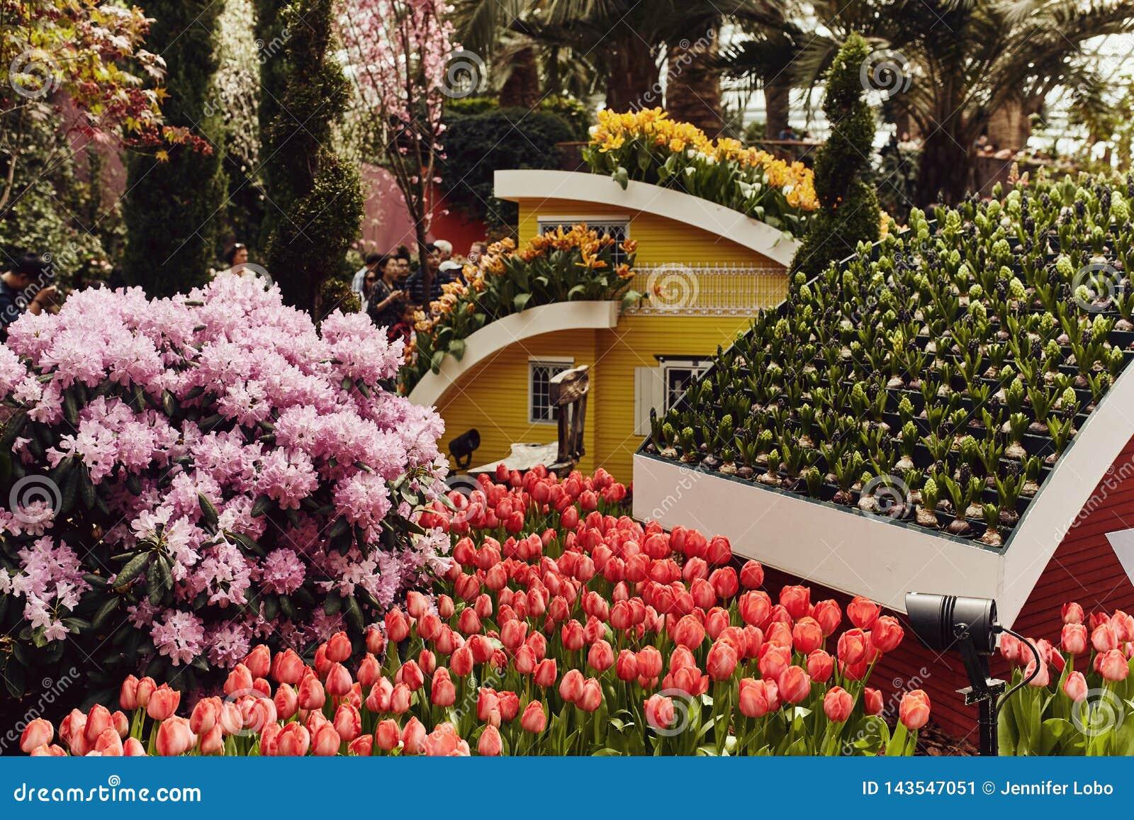 Ab?bada da flor nos jardins pela ba?a