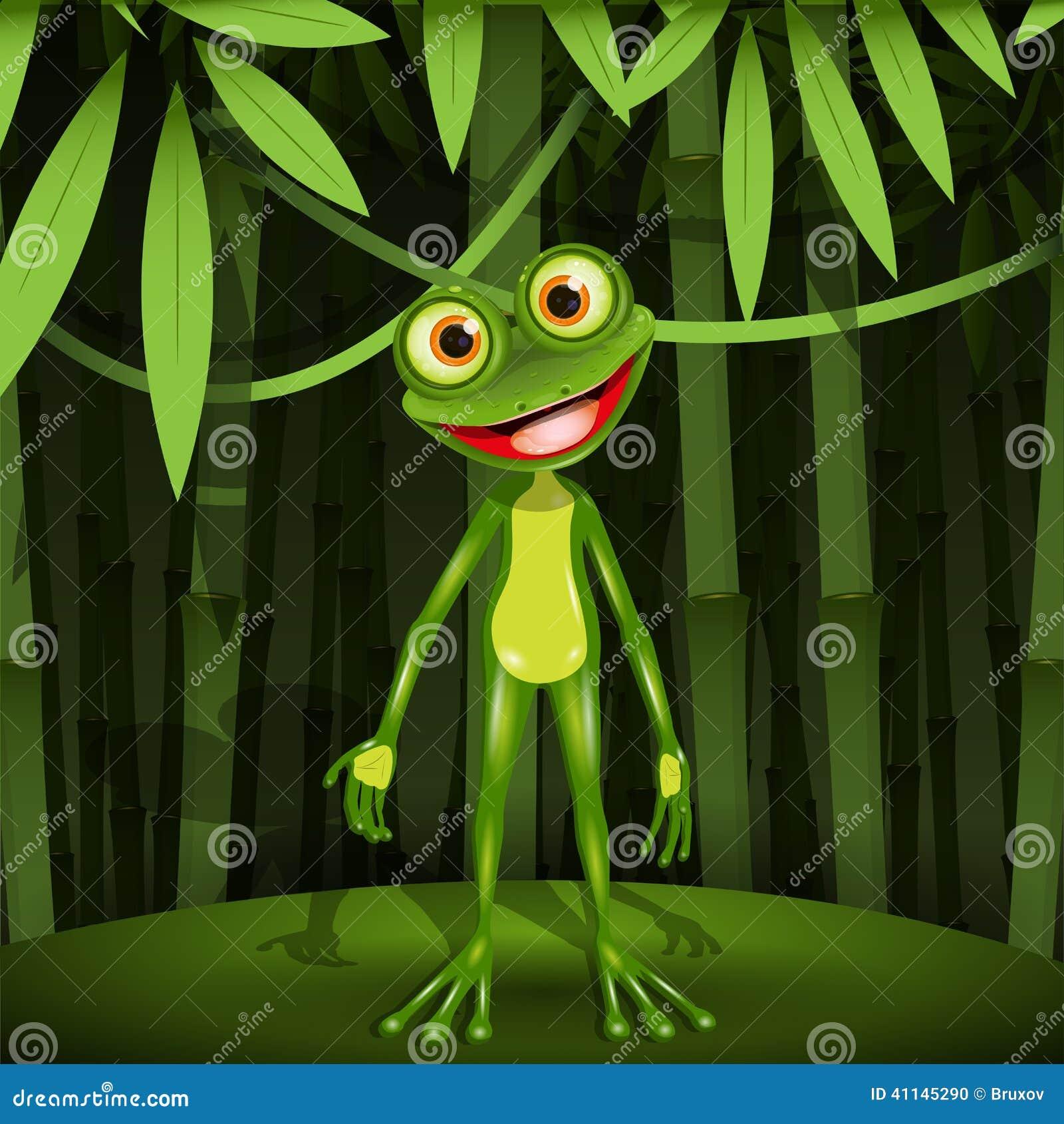 Żaba w dżungli