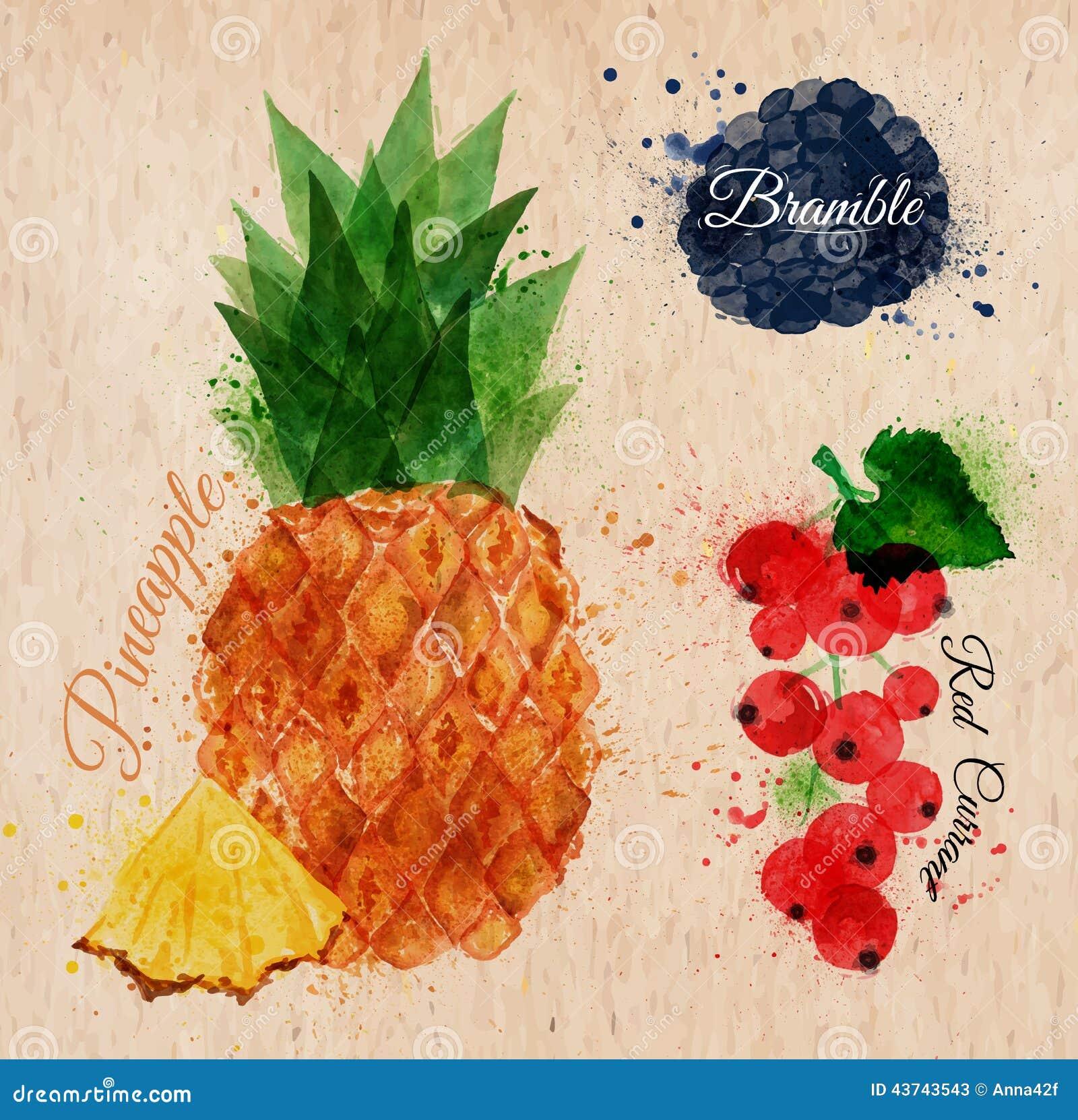 Abacaxi da aquarela do fruto, amora, corinto vermelho