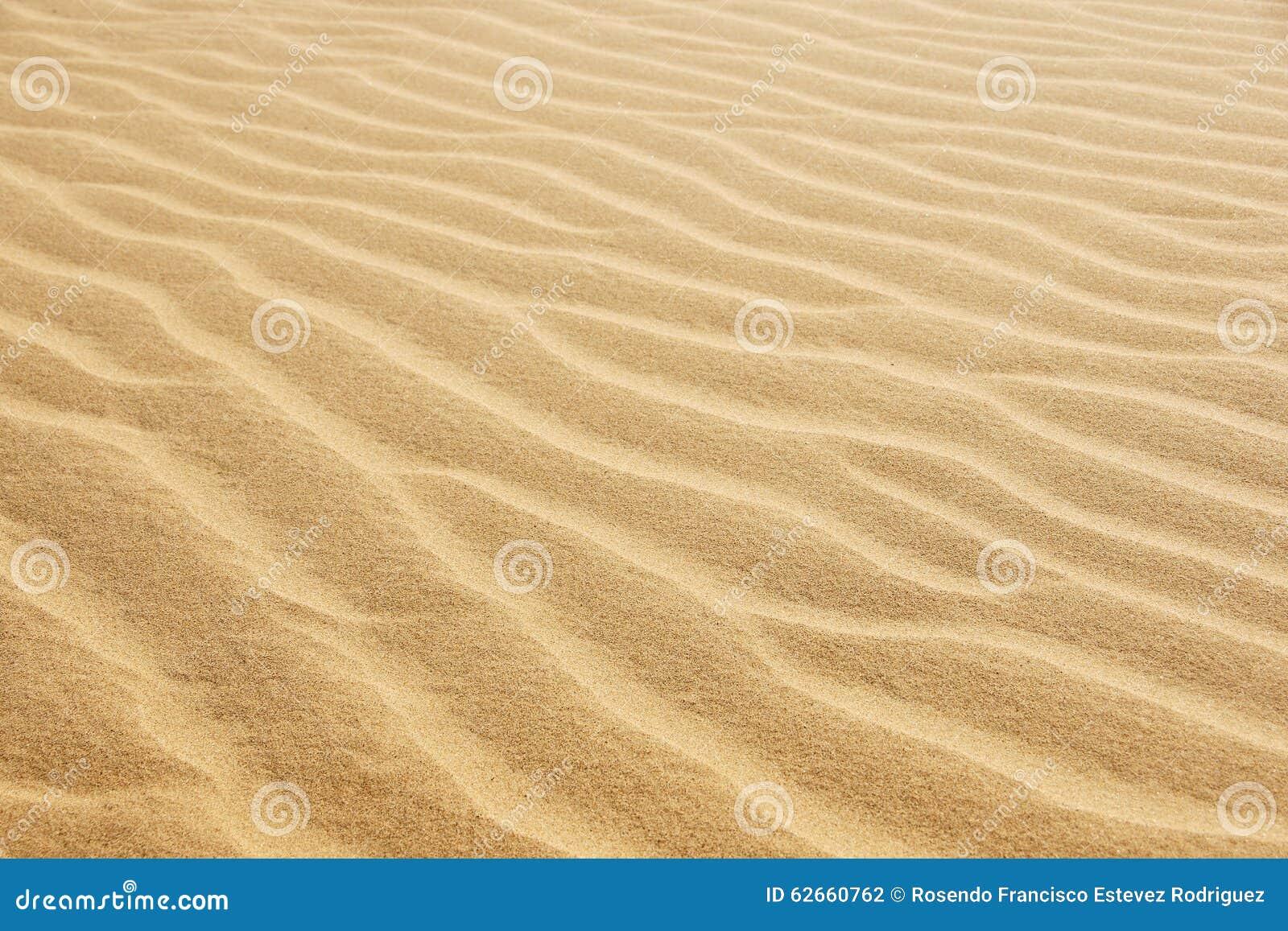 Abandone la arena