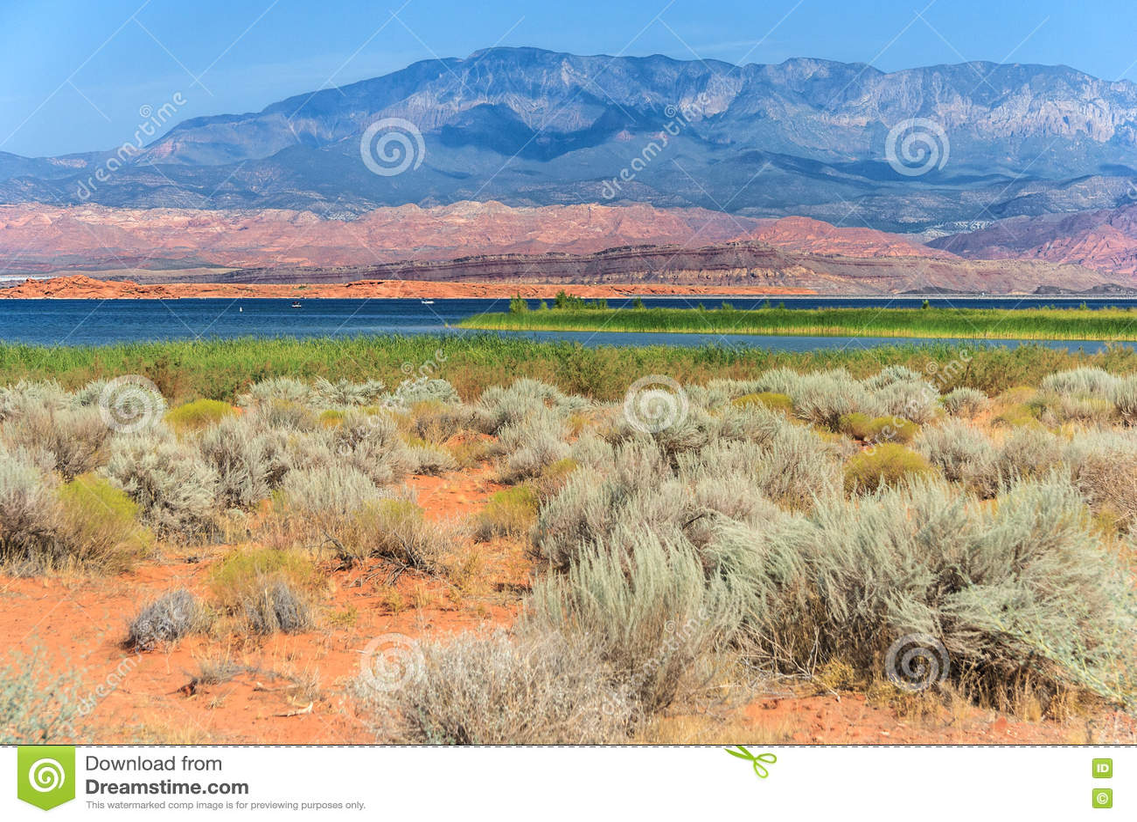 Abandone la vegetación en parque de estado del hueco de la arena en Utah