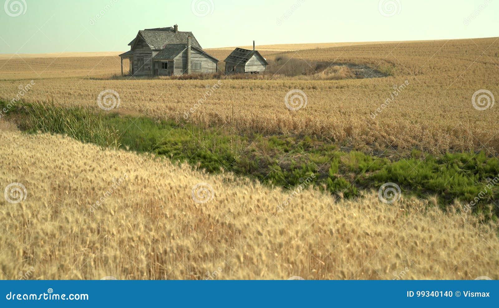 Abandoned Farmhouse Palouse Washington State 4k Uhd