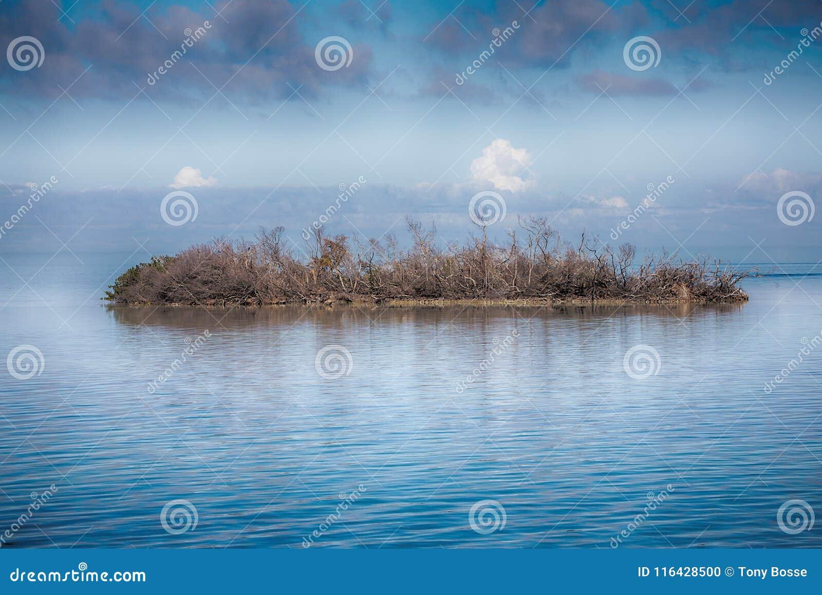 Abandoned, Desolate Island stock photo  Image of environment - 116428500