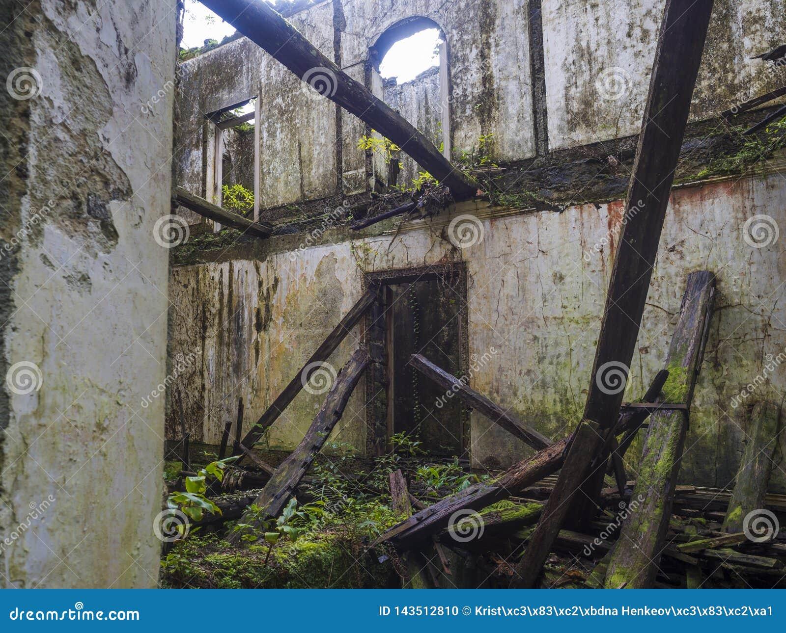 Abandoned fördärvar av historiskt villahus i tropisk skog på den fotvandra slingan för vandringsledet nära Furnas, den SaoMiguel