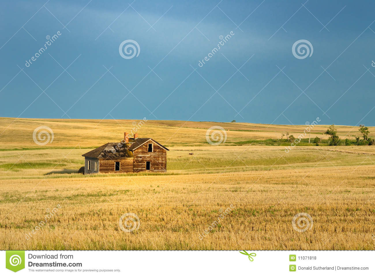 Abandoned homestead royalty free stock photos image for Free homestead