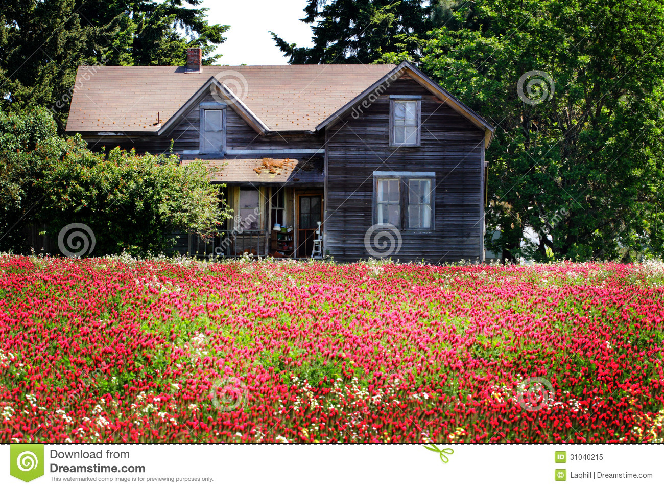 Abandoned homestead royalty free stock photo image 31040215 for Free homestead