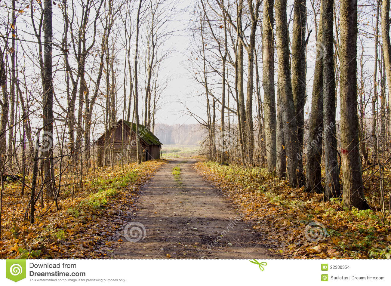 Abandoned House Near Gravel Road And Autumn Trees  Stock