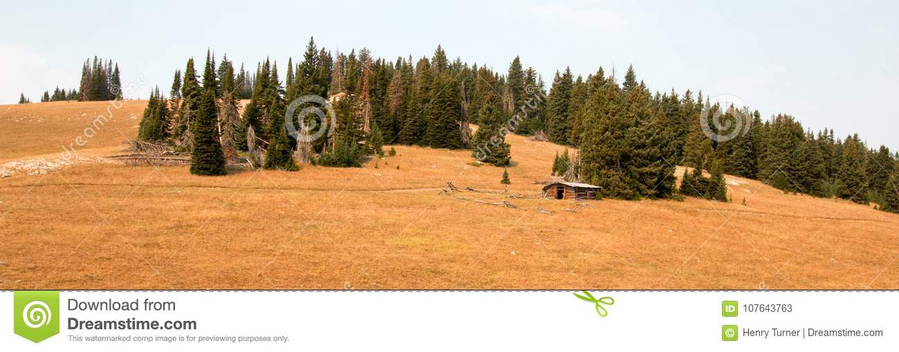 Abandoned log cabin homestead in the Central Rocky Mountains of Montana U S A