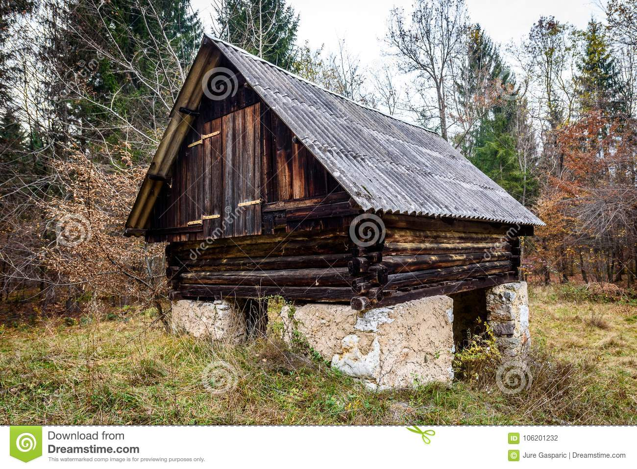 Abandoned old wooden house Cabin in the woods in Slovenia.