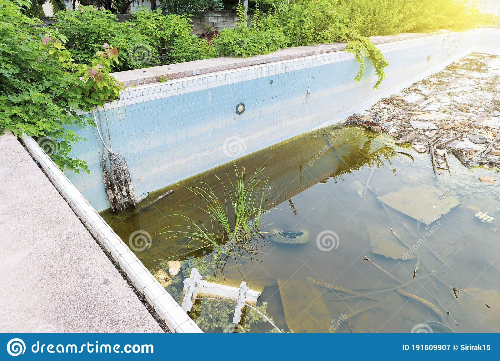 1 681 Outdoor Public Swimming Pool Photos Free Royalty Free Stock Photos From Dreamstime