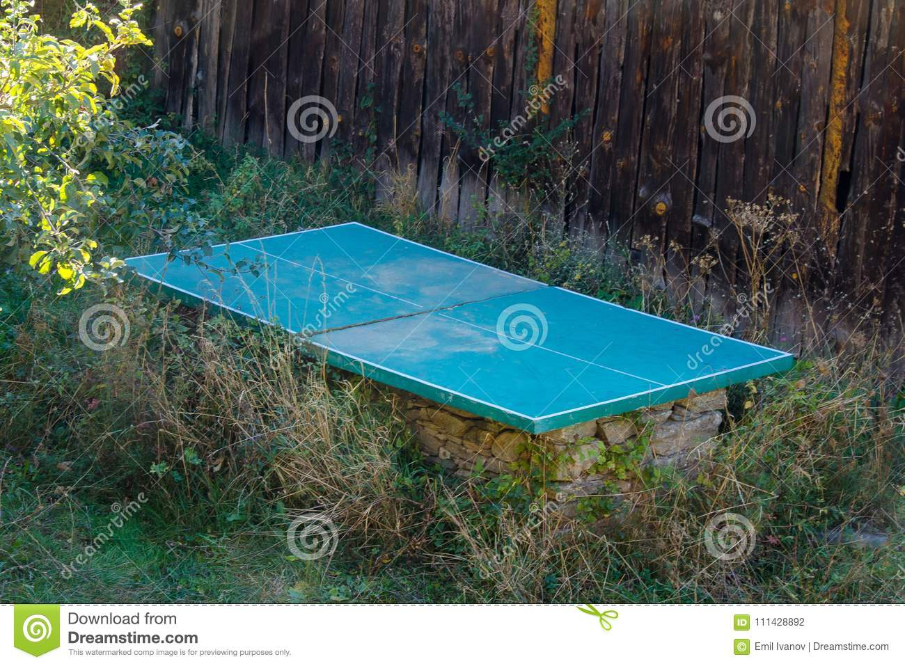 Abandoned Ping Pong Table In Overgrown Garden Stock Photo - Image