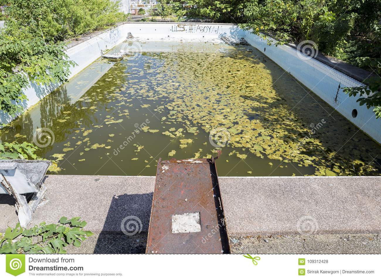 Abandoned Public Swimming Pool In Thailand Stock Photo Image Of Building Grunge 109312428