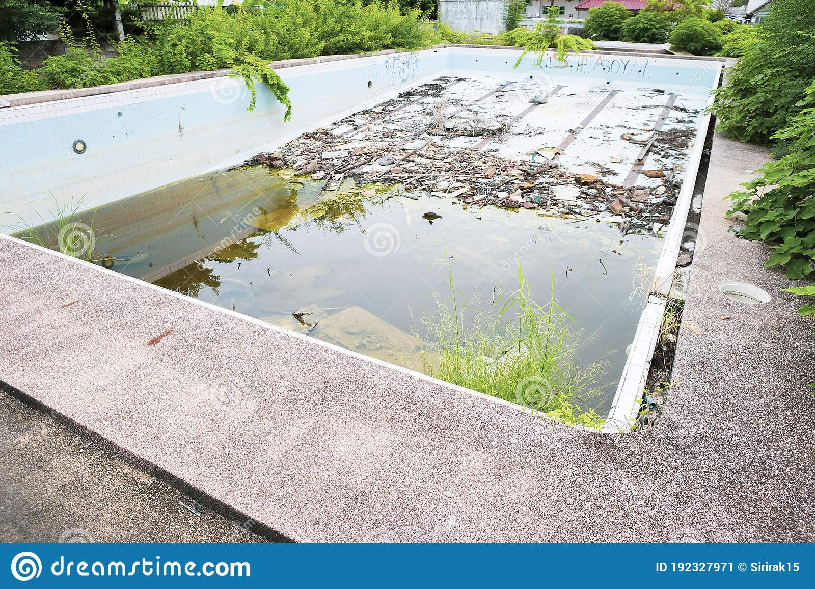 Abandoned Public Swimming Pool In Thailand Garbage In Dirty Water Pollution Stock Image Image Of Background Danger 192327971