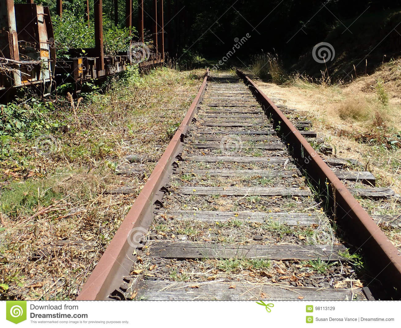 Abandoned Railroad Tracks In Fall Stock Image - Image of