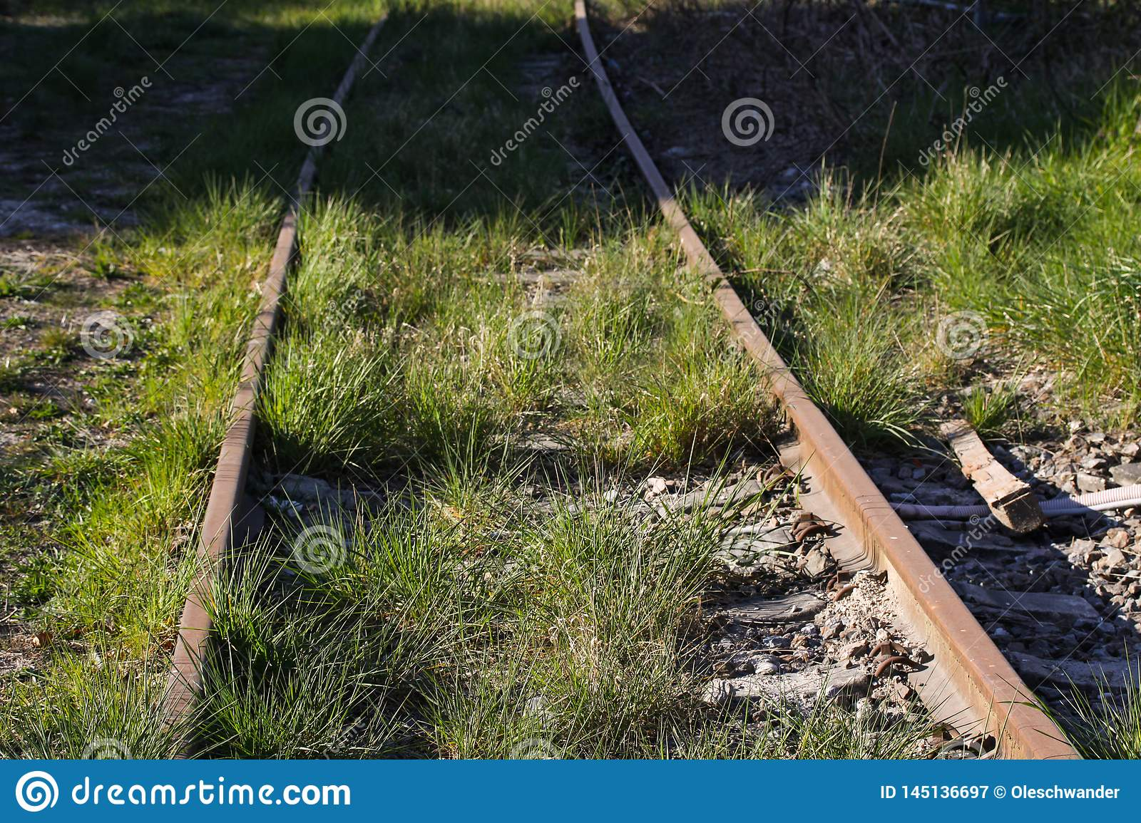 Abandoned railroad tracks with green grass and weed