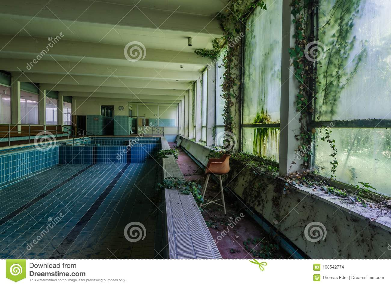 Abandoned Swimming Pool With Plants Stock Photo Image Of House Discovery 108542774