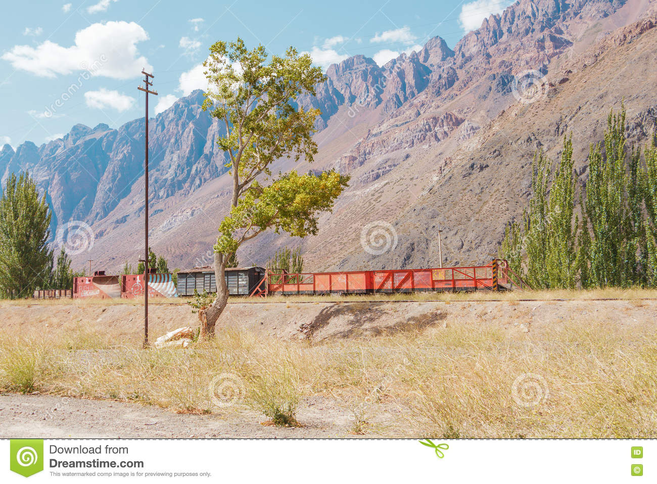 Argentina Andes Train Travel